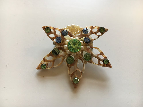 Rare and Delicate Shell Brooch with Coloured Stones and Seed Pearls