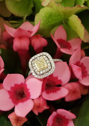 capet-joaillier-bague-or-diamants-jonquille.jpg