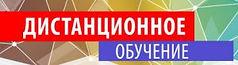 distanzionnoe_obuchenie_banner_145328279