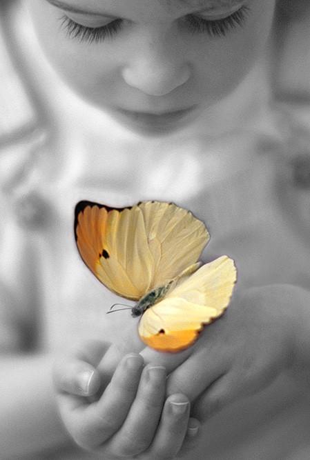 ChildButterfly.jpg