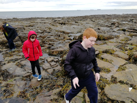 Beach School: Whitley Bay