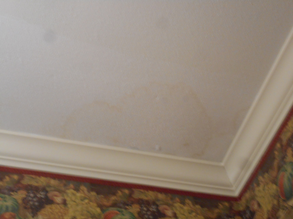 Gabe Semenza, River City Inspections LLC, Missoula home inspectors, mold inspection