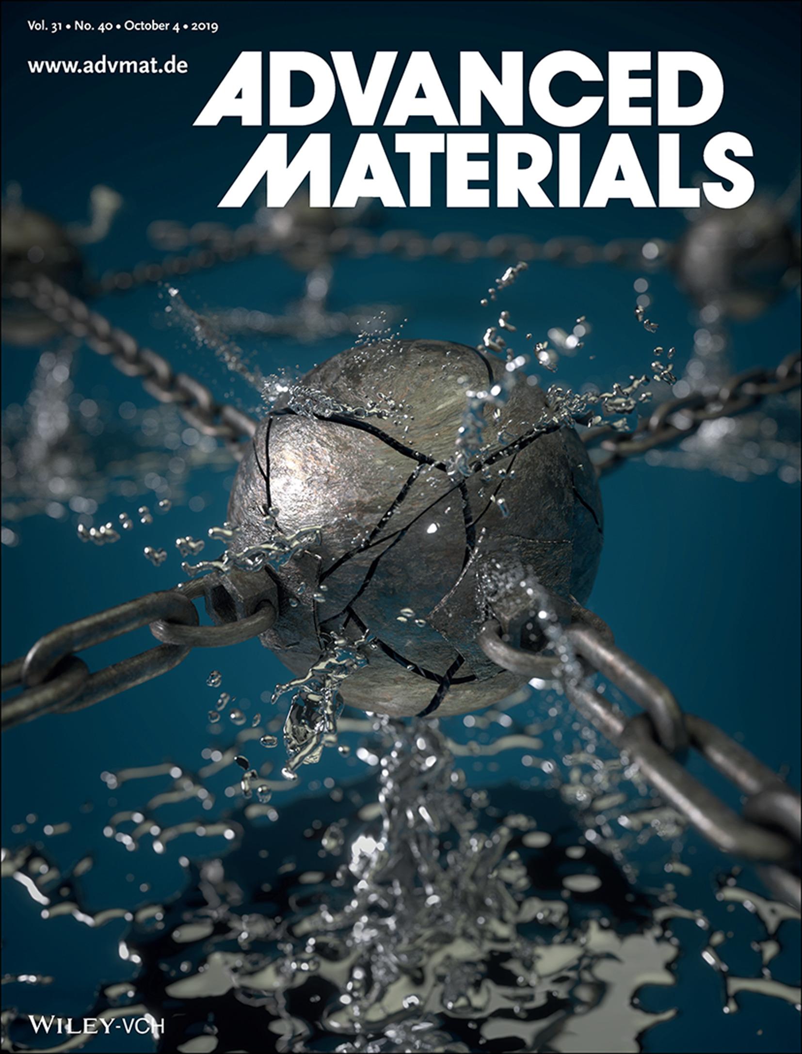 Poly-LMN Adv Mater Cover Art