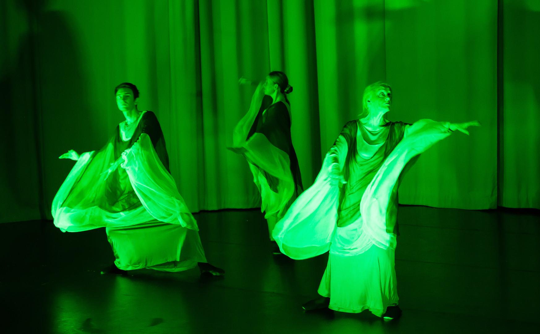 Septim Ensemble: Murtunut Elämänpuu