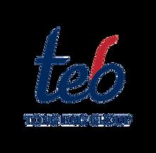 Tong Eng Group - Logo Hi Res.png