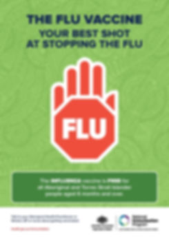 flu indig-page-001.jpg