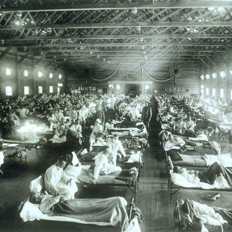 Spanish Flu vs COVID-19: medical technology and health system resilience