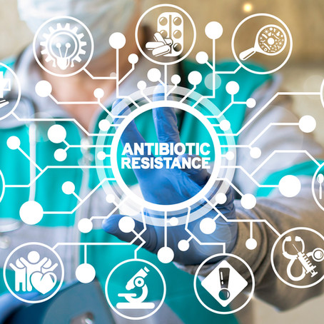 A little less conversation, a little more action please: the global state of AMR