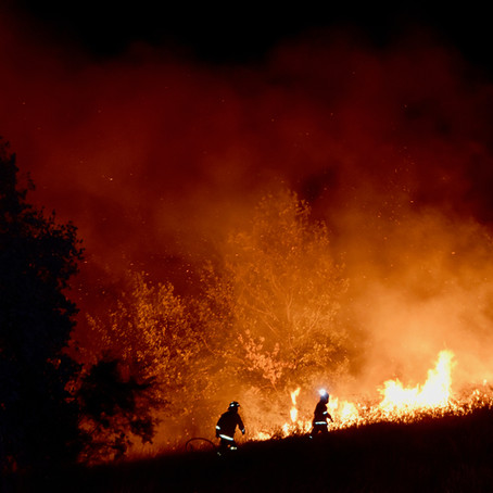 Leadership under fire: lessons in leadership from Australia's bushfire crisis