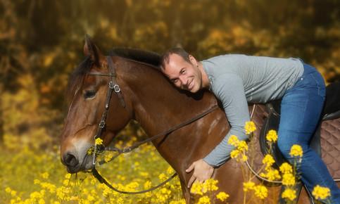E Pferd_pp.jpg