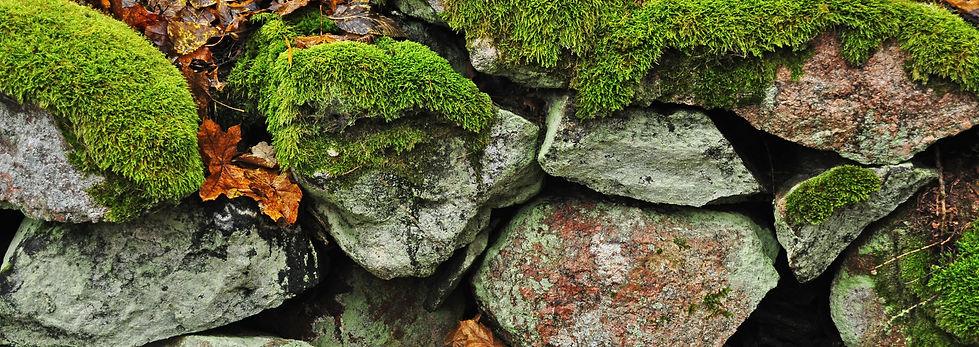 stonewallfall.jpg