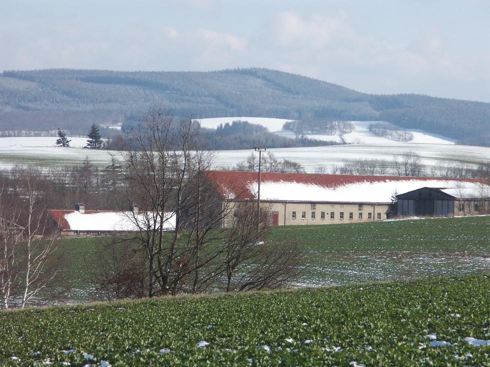 Stallanlagen Berreuth, Blick zum Kohlbusch, 24.03.2008