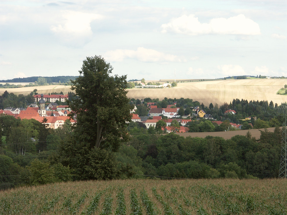 Blick vom Berreuther Lindenweg nach Dippoldiswalde, 28.08.2011