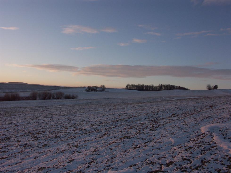 Felder über dem Ortsteil Reichstädt, Firstenweg, 23.01.2009