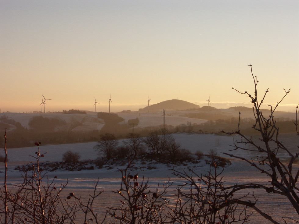 Blick vom Firstenweg Richtung Luchberg, 23.01.2009
