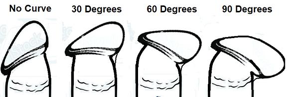 Penis Frenular Curves.png