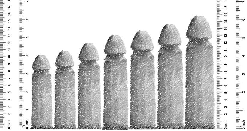 Size - Percentiles.jpg
