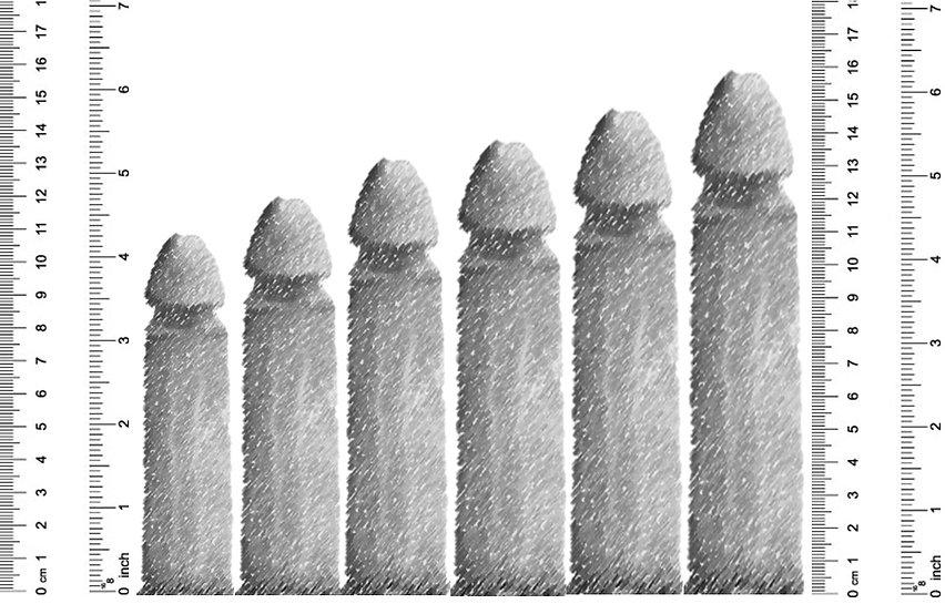 Size - Narrow.jpg