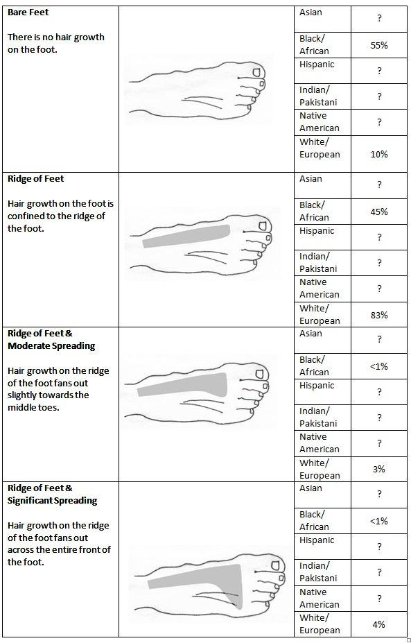 Feet Chart.jpg