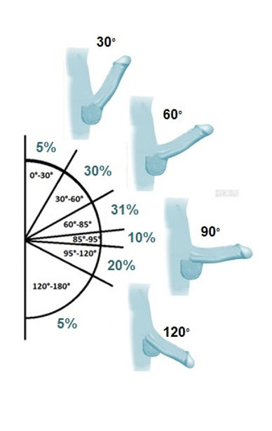 Angles with Percentages.jpg