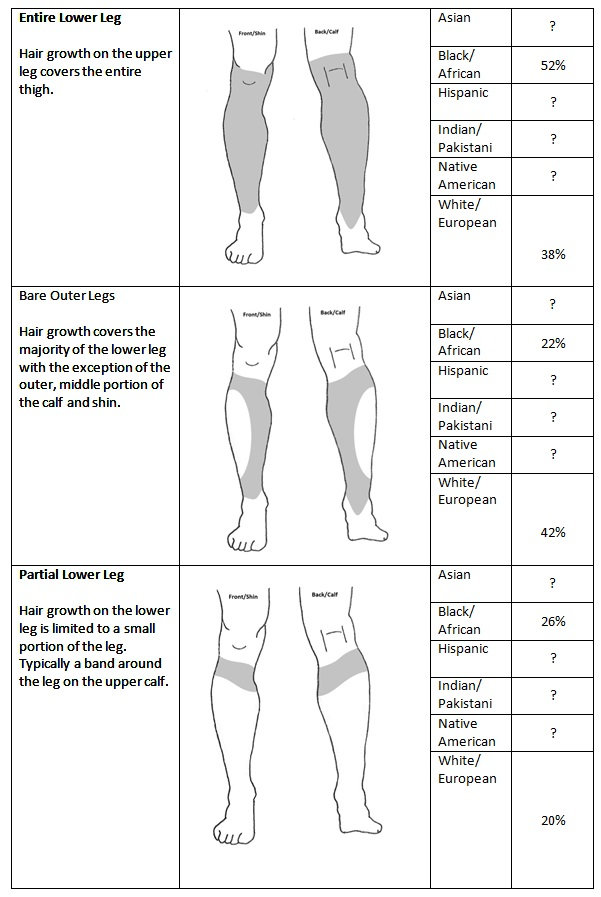 Lower Leg Chart.jpg