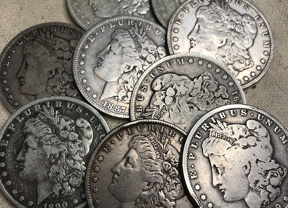 Single Low Grade Circulated Morgan Dollar (non-1921)