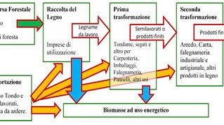La Biomassa vs LegnoUrbano ?