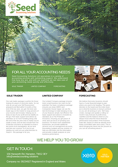 SEED ACCOUNTING SOLUTIONS LTD FLYER MAY