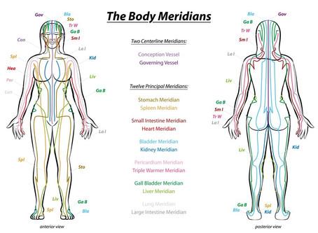 Les méridiens de notre corps