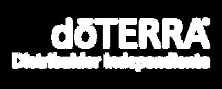 logo-di-white.png