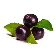 Acai berry- the super food and it's health benefits