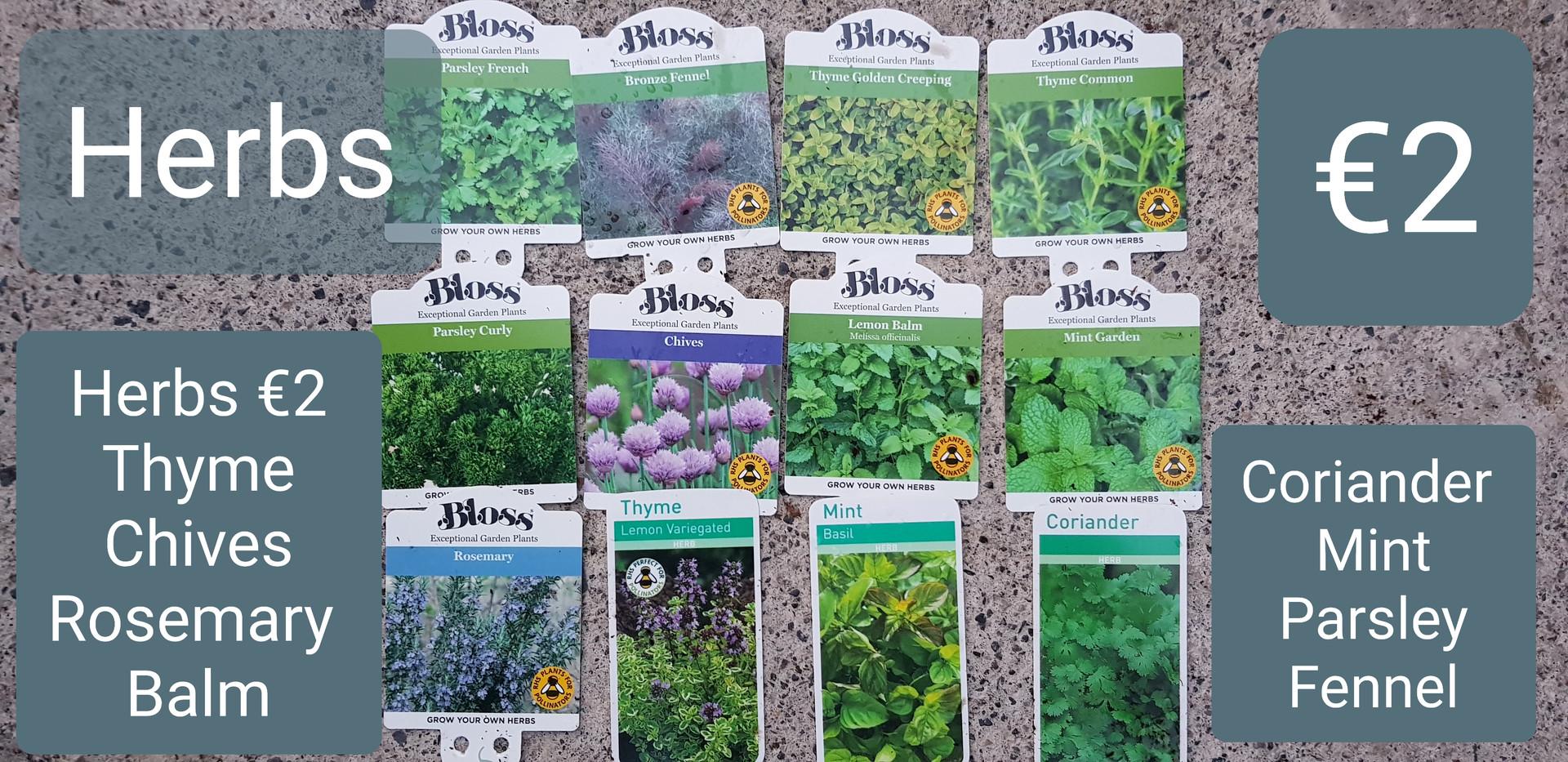 Herbs selection €2