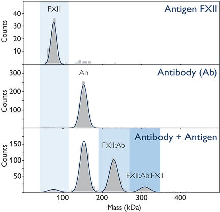 FXII_antigen_binding_resized2.png
