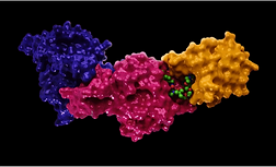Formation of PROTAC ternary complexes using mass photometry