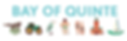 BoQ_Logo_Primary_Whiteground.png