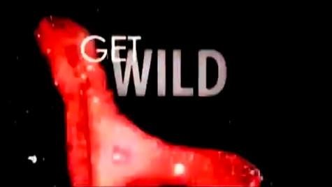 globe / Get Wild