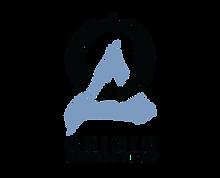 OriginAcoustics_Logo_Portrait_BlackBlue_