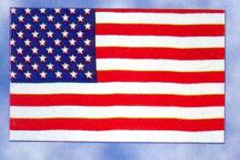 Stars and Stripes USA Flag