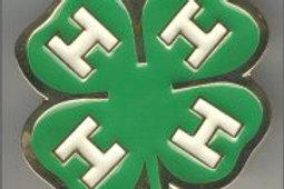 4 LEAF CLOVER IRISH BUCKLE EB2179