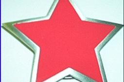 SUPERSTAR PINK STAR BUCKLE GT4627