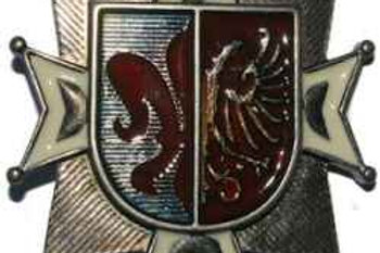 Coat of Arms Buckle