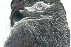 eagle head b6044