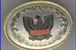GOLDWING BUCKLE RC249