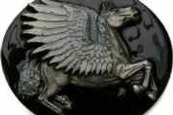 Pegasus Buckle dd563