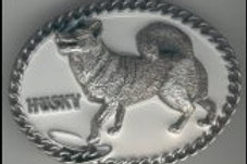 HUSKY DOG BUCKLE DD559