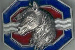 HORSE BUCKLE F7