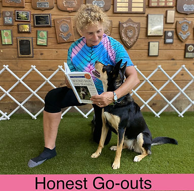 Honest Go-outs cover.JPG