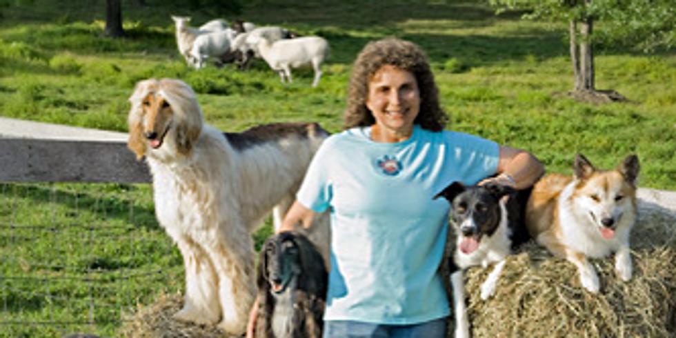 Diane Bauman Obedience Seminar in California
