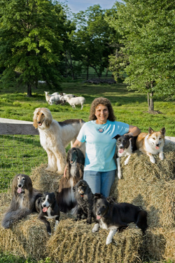 Diane and dogs