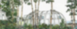 지오돔 presentation 사진 (67)_edited.jpg
